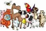 Россияне переходят на ветеринарные препараты