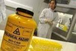 Пандемия свиного гриппа вызвана лабораторной утечкой