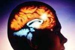 Сканеры головного мозга могут узнать, о чем вы думаете
