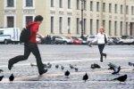 Люди, которые медленно ходят, втрое чаще могут умереть от сердечных заболев ...