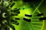 Вирус простого герпеса – непростое лечение