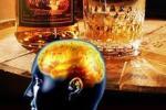 Алкоголь разрушает мозг за шесть минут