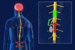 Микрочип вылечит хроническую боль