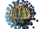 Иммунитет переболевших H1N1 оказался универсальным