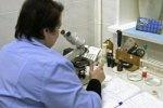 Анализ крови позволит выявить склонность к диабету