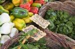 Растительные лекарства и органические овощи - враги человека, предупреждают ...