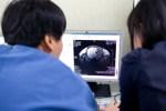 Врачи научились оценивать боль с помощью сканирования мозга