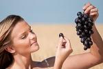 Виноград защищает от ультрафиолета