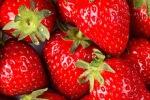 Клубника - вкусное средство против старения организма