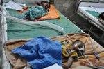 Энцефалит стремительно захватывает Индию - врачи бьют тревогу
