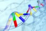 В теле старейшей жительницы планеты обнаружили особые гены