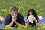 Народные способы лечения аллергии