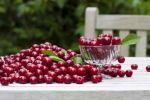 Прекращение боли в суставах, при помощи вишни