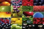 Антиоксиданты их роль в организме человека