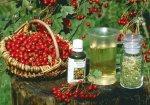 Народная медицина – лучший соратник здорового образа жизни