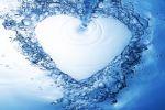 Живая вода. Мы то, что мы пьем