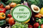 Что такое ГМО и почему они вредны?
