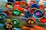 Необходимость минералов и макроэлементов в повседневной жизни