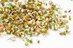 Проростки зерен - живые продукты для совершенного здоровья