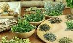 Травы и методы очистки в народной медицине