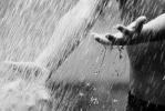 Дождевая вода: плюсы и минусы