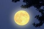 Вредно ли долго смотреть на Луну?