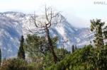 Проживание в горах полезно для здоровья