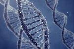 Осторожнее с выражениями, берегите свои гены!