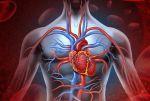 Традиционное одноразовое измерение артериального давления не дает реальной  ...