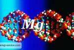 Недостаток магния в организме человека катастрофичен