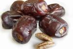 Чудесные плоды финиковой пальмы